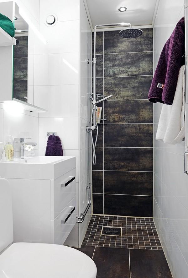 Petites salle de bain avec douche
