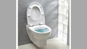Un wc sans bride, c'est quoi ?